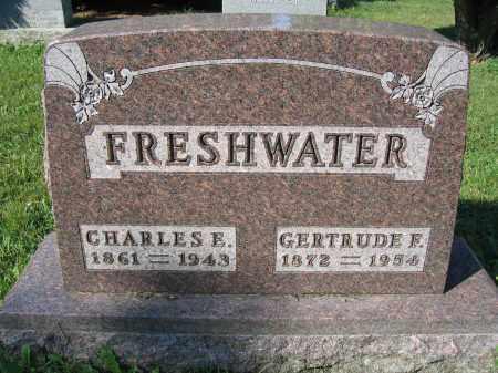 FRESHWATER, CHARLES E. - Union County, Ohio | CHARLES E. FRESHWATER - Ohio Gravestone Photos