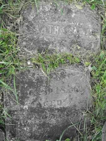 GABRIEL, MARTHA ANN - Union County, Ohio | MARTHA ANN GABRIEL - Ohio Gravestone Photos