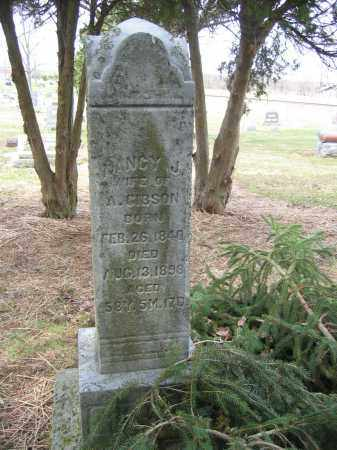 GIBSON, ALEXANDER - Union County, Ohio | ALEXANDER GIBSON - Ohio Gravestone Photos