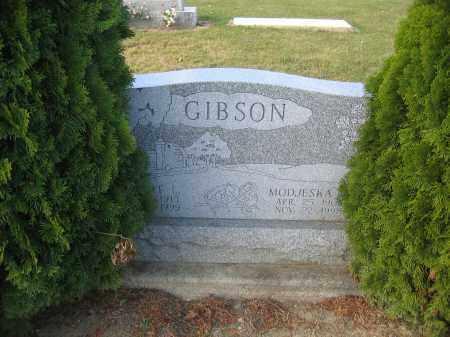 GIBSON, DELBERT L. - Union County, Ohio | DELBERT L. GIBSON - Ohio Gravestone Photos