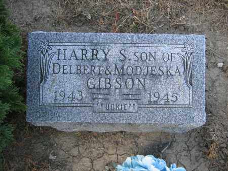 GIBSON, HARRY S. - Union County, Ohio | HARRY S. GIBSON - Ohio Gravestone Photos