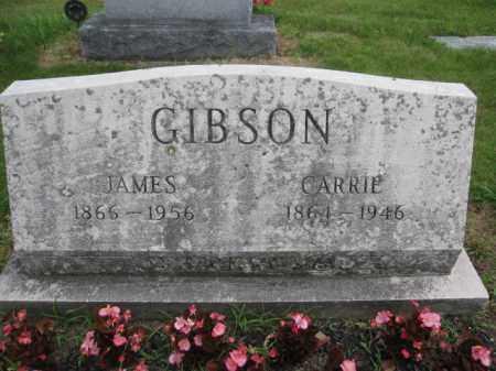 GIBSON, JAMES - Union County, Ohio | JAMES GIBSON - Ohio Gravestone Photos
