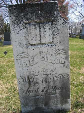 GIBSON, LEVIN - Union County, Ohio | LEVIN GIBSON - Ohio Gravestone Photos