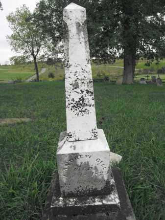 GILL, ELIZABETH EWING - Union County, Ohio | ELIZABETH EWING GILL - Ohio Gravestone Photos
