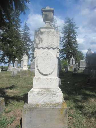 GOESS, ANNA MARGARETHA - Union County, Ohio | ANNA MARGARETHA GOESS - Ohio Gravestone Photos