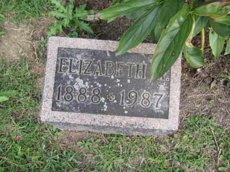 GRAVES, ELIZABETH - Union County, Ohio   ELIZABETH GRAVES - Ohio Gravestone Photos