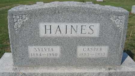 HAINES, SYLVIA - Union County, Ohio | SYLVIA HAINES - Ohio Gravestone Photos