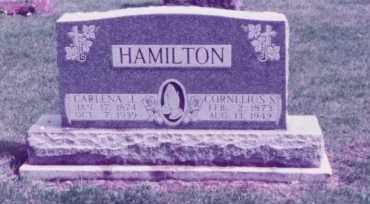 HAMILTON, CORNELIUS SPRINGER - Union County, Ohio | CORNELIUS SPRINGER HAMILTON - Ohio Gravestone Photos