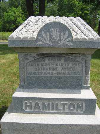 HAMILTON, CATHARINE AYRES - Union County, Ohio | CATHARINE AYRES HAMILTON - Ohio Gravestone Photos