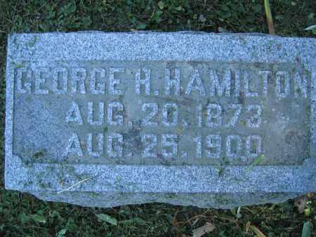 HAMILTON, GEORGE H. - Union County, Ohio | GEORGE H. HAMILTON - Ohio Gravestone Photos