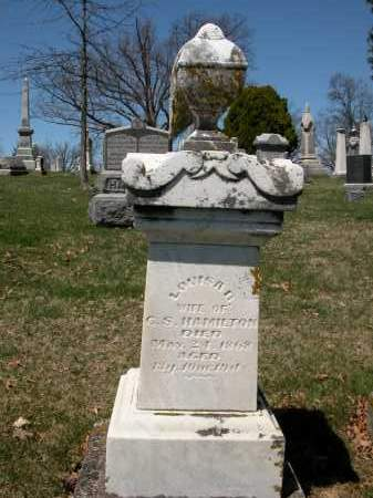 HAMILTON, LOUISA B. - Union County, Ohio | LOUISA B. HAMILTON - Ohio Gravestone Photos