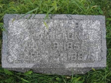 HAMILTON, WILLIAM B. - Union County, Ohio | WILLIAM B. HAMILTON - Ohio Gravestone Photos