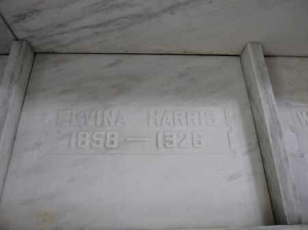 HARRIS, ELVINA BURNS - Union County, Ohio | ELVINA BURNS HARRIS - Ohio Gravestone Photos
