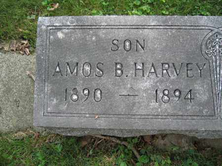 HARVEY, AMOS B. - Union County, Ohio   AMOS B. HARVEY - Ohio Gravestone Photos