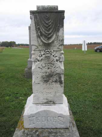 HEDGES, ALICE M. - Union County, Ohio | ALICE M. HEDGES - Ohio Gravestone Photos