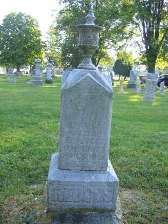 HEDGES, SARAH - Union County, Ohio | SARAH HEDGES - Ohio Gravestone Photos