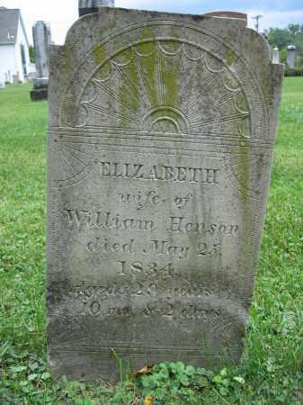 HENSON, ELIZABETH - Union County, Ohio | ELIZABETH HENSON - Ohio Gravestone Photos