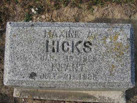 HICKS, MAXINE A. - Union County, Ohio | MAXINE A. HICKS - Ohio Gravestone Photos