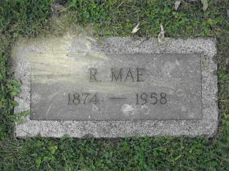 HINES, REBECCA MAE DALLY - Union County, Ohio | REBECCA MAE DALLY HINES - Ohio Gravestone Photos