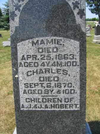 HOBERT, MAMIE - Union County, Ohio   MAMIE HOBERT - Ohio Gravestone Photos