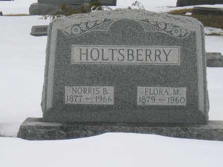 HOLTSBERRY, NORRIS B. - Union County, Ohio | NORRIS B. HOLTSBERRY - Ohio Gravestone Photos