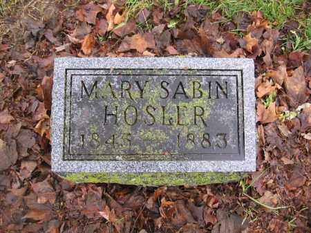 HOSLER, MARY SABIN - Union County, Ohio | MARY SABIN HOSLER - Ohio Gravestone Photos