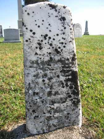 JOHNSON, HIRAM - Union County, Ohio | HIRAM JOHNSON - Ohio Gravestone Photos