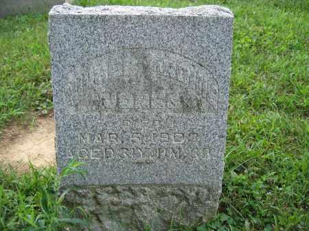 JONES, WILBER ARCHIE - Union County, Ohio | WILBER ARCHIE JONES - Ohio Gravestone Photos