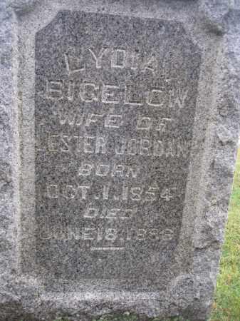 JORDAN, LYDIA BIGELOW - Union County, Ohio | LYDIA BIGELOW JORDAN - Ohio Gravestone Photos