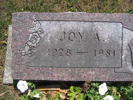 KERNS, JOY A. - Union County, Ohio   JOY A. KERNS - Ohio Gravestone Photos