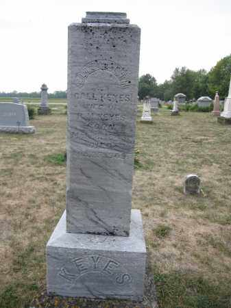 KEYS, ELIZABETH CALL - Union County, Ohio   ELIZABETH CALL KEYS - Ohio Gravestone Photos