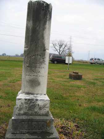 KIRK, WILLIAM, REV. - Union County, Ohio | WILLIAM, REV. KIRK - Ohio Gravestone Photos
