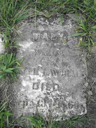 LAWRENCE, MARY - Union County, Ohio | MARY LAWRENCE - Ohio Gravestone Photos