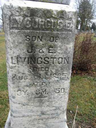 LIVINGSTON, LYCURGUS E. - Union County, Ohio | LYCURGUS E. LIVINGSTON - Ohio Gravestone Photos
