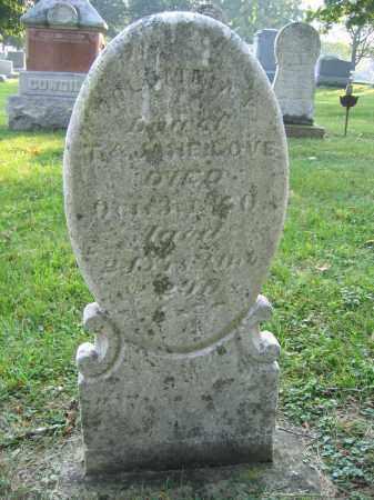 LOVE, COLUMBIA - Union County, Ohio | COLUMBIA LOVE - Ohio Gravestone Photos