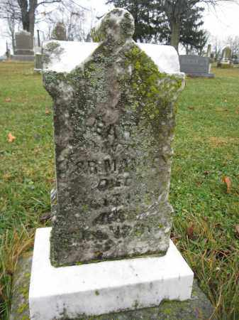 MANLEY, EARL - Union County, Ohio | EARL MANLEY - Ohio Gravestone Photos