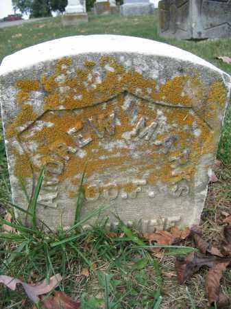 MARKS, ANDREW - Union County, Ohio | ANDREW MARKS - Ohio Gravestone Photos