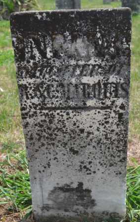 MARQUIS, INFANT DAUGHTER - Union County, Ohio | INFANT DAUGHTER MARQUIS - Ohio Gravestone Photos
