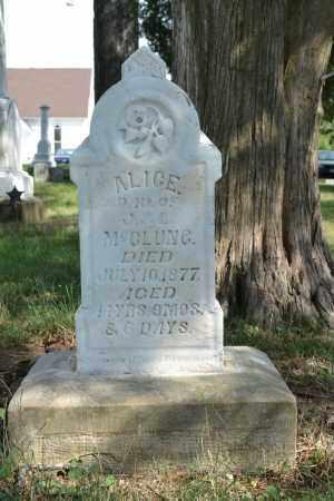 MCCLUNG, ALICE - Union County, Ohio | ALICE MCCLUNG - Ohio Gravestone Photos