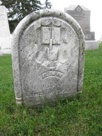 MCCREA, ANN - Union County, Ohio | ANN MCCREA - Ohio Gravestone Photos