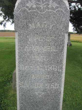 MCNEIL, MARY - Union County, Ohio | MARY MCNEIL - Ohio Gravestone Photos