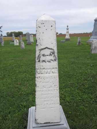 MECASKEY, OLIVE O. - Union County, Ohio | OLIVE O. MECASKEY - Ohio Gravestone Photos