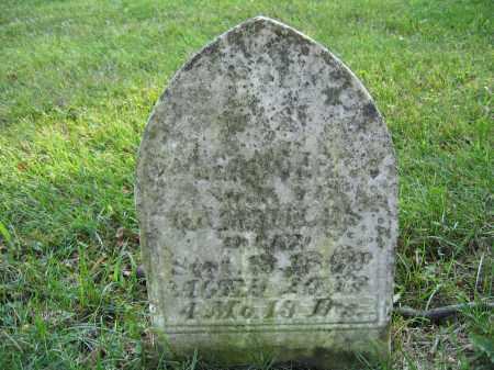 MILES, LEANDER - Union County, Ohio | LEANDER MILES - Ohio Gravestone Photos