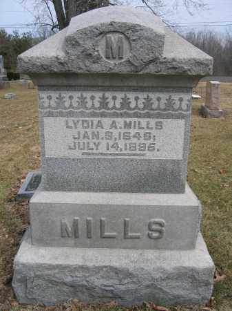 MILLS, LUTHER B. - Union County, Ohio | LUTHER B. MILLS - Ohio Gravestone Photos