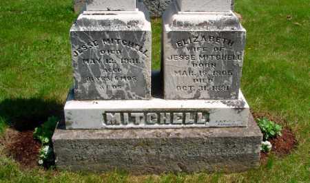 MITCHELL, ELIZABETH ROBINSON - Union County, Ohio | ELIZABETH ROBINSON MITCHELL - Ohio Gravestone Photos