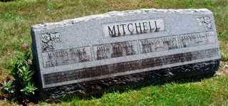 MITCHELL, JUDGE DAVID - Union County, Ohio | JUDGE DAVID MITCHELL - Ohio Gravestone Photos