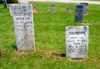 ROBINSON MITCHELL, ELIZABETH - Union County, Ohio | ELIZABETH ROBINSON MITCHELL - Ohio Gravestone Photos
