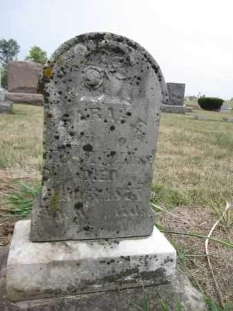MORSE, SARAH E. - Union County, Ohio | SARAH E. MORSE - Ohio Gravestone Photos