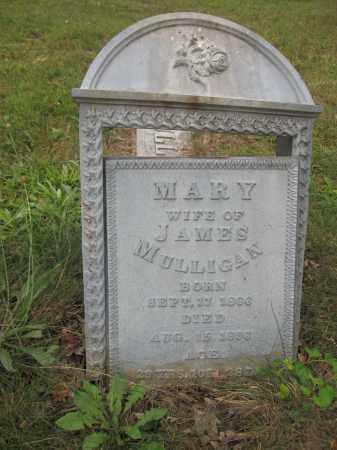 MULLIGAN, MARY - Union County, Ohio   MARY MULLIGAN - Ohio Gravestone Photos