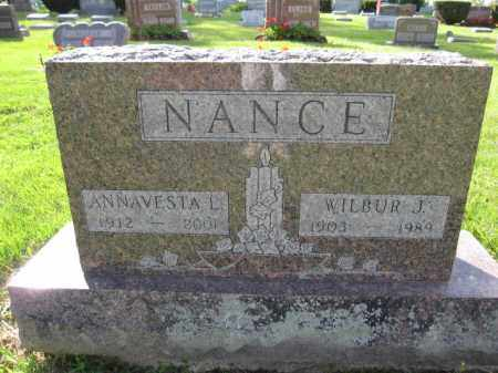 NANCE, ANNAVESTA L. AMRINE - Union County, Ohio | ANNAVESTA L. AMRINE NANCE - Ohio Gravestone Photos